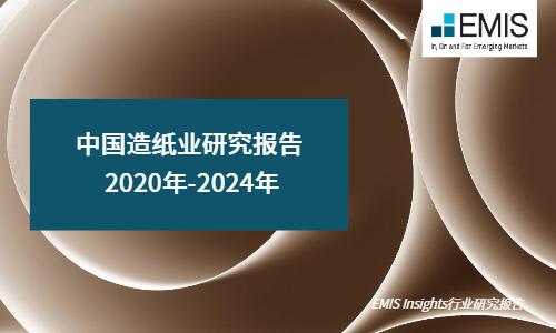 中国造纸业研究报告 2020年-2024年
