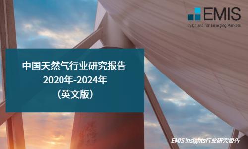 中国天然气行业研究报告 2020年-2024年